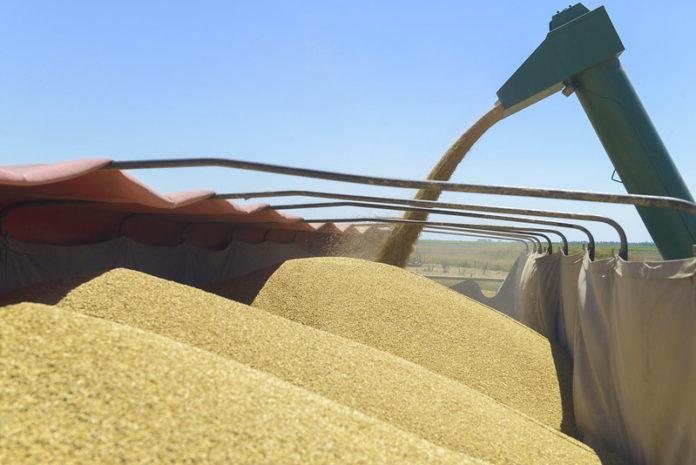 Agricultura creó la Mesa de Competitividad Ambiental Agroindustrial.