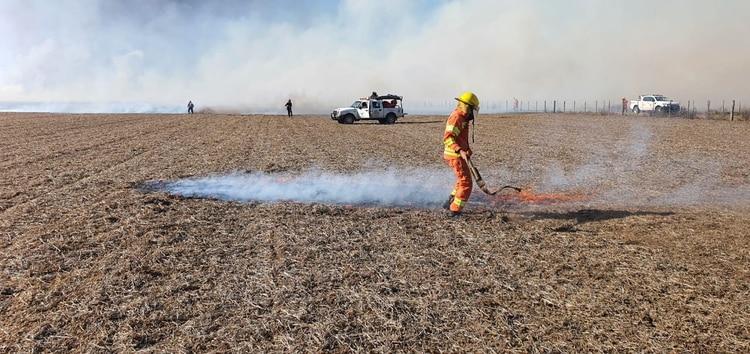 El fuego afectó 5 hectáreas de trigo y 30 de maíz. Foto: CRA.