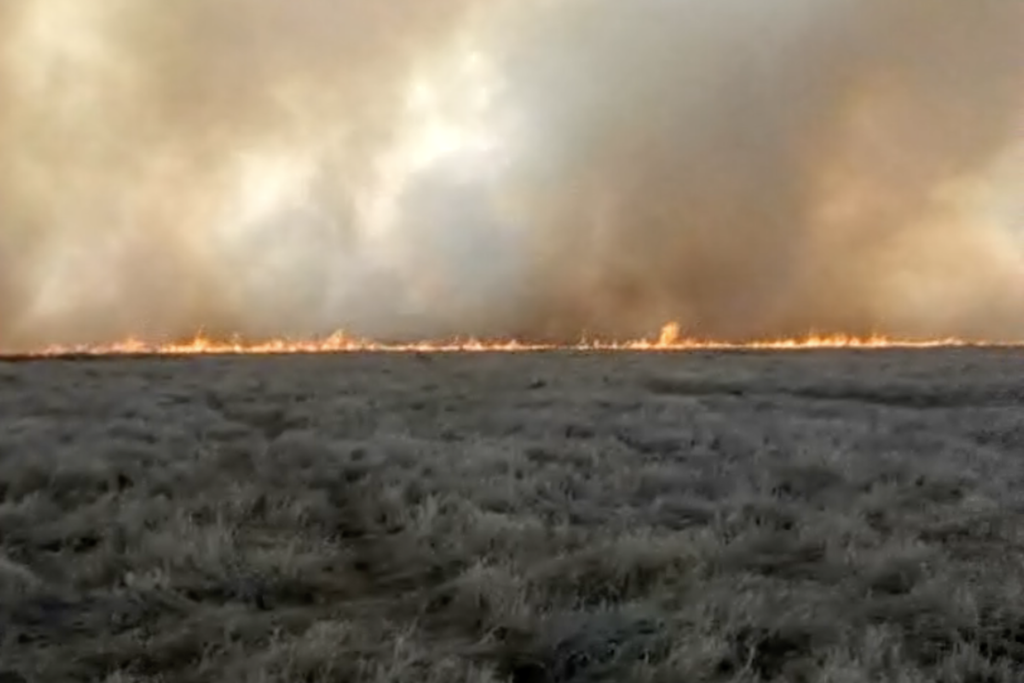 Incendio Campo Santa Fe