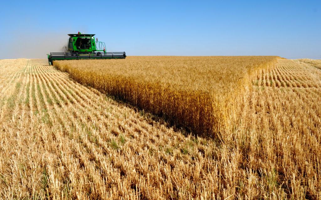Renta Agrícola